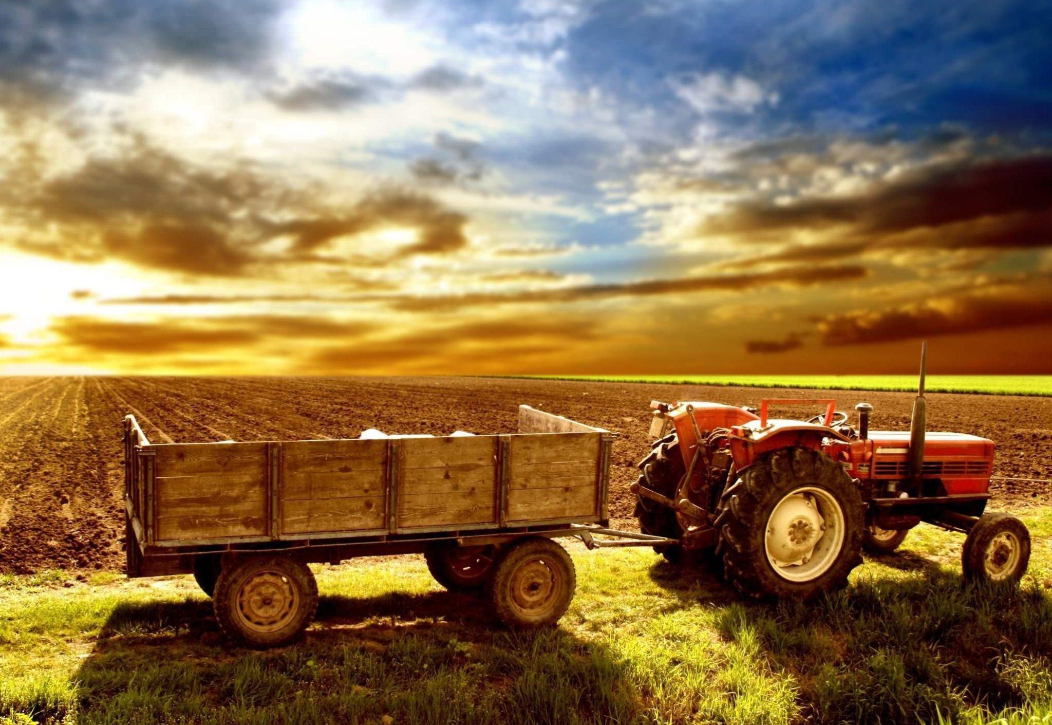 Поле и трактор