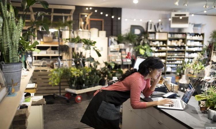 Единый реестр субъектов МСП
