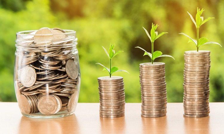 Освобождение от уплаты налогов и взносов