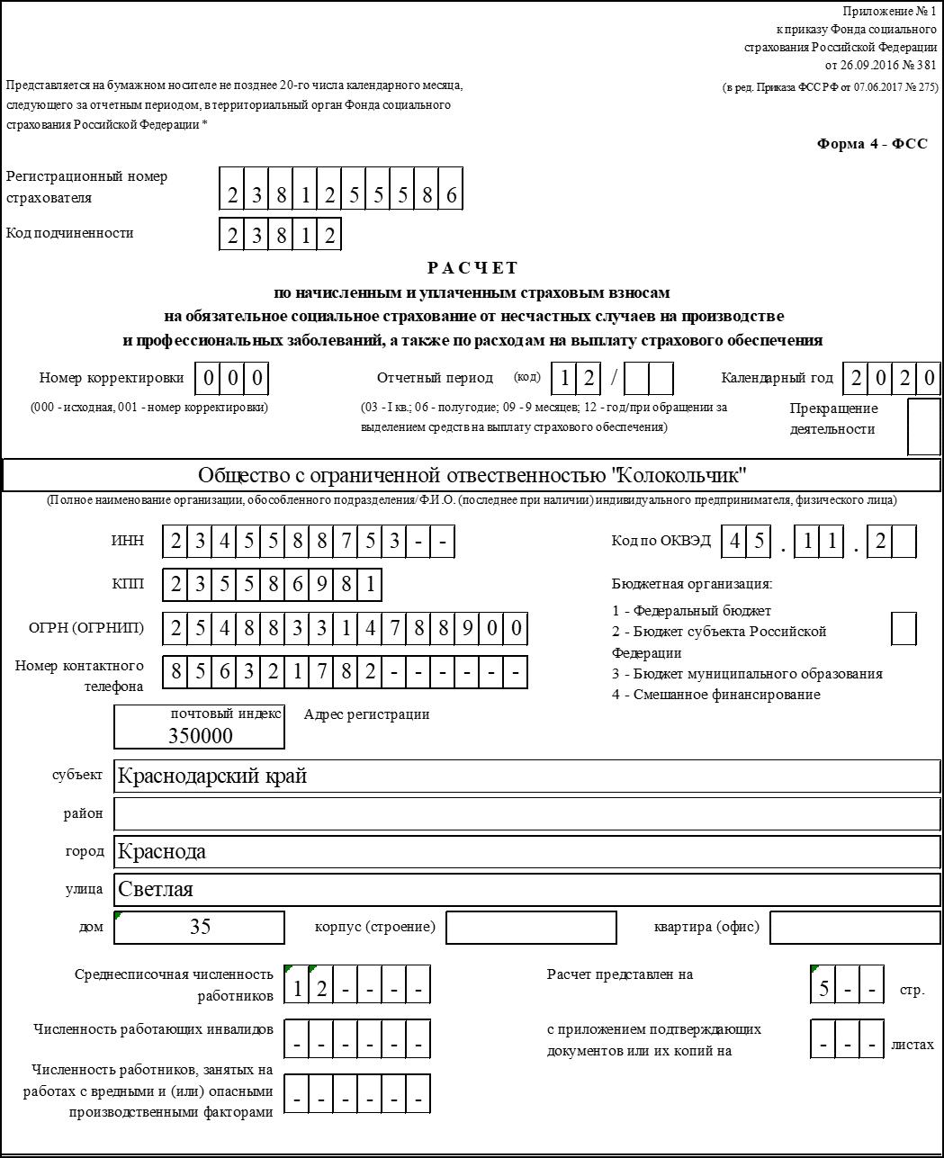 Титульный лист 4-ФСС начало