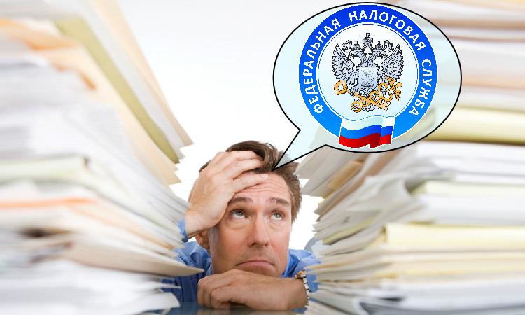 Сроки представления документов ФНС